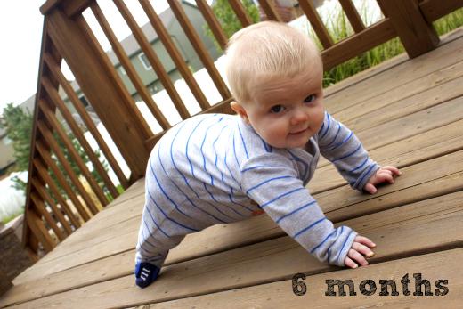 JJ 6 months