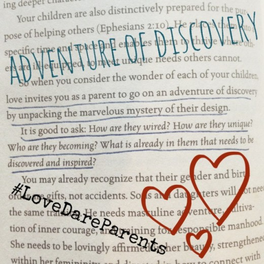 Love Dare Adventure
