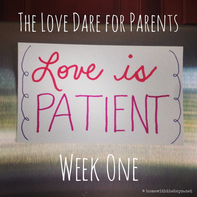 The Love Dare For Parents Week One Home With The Boys