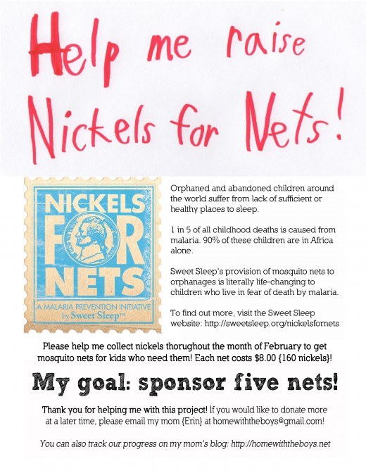 Nickels for Nets flier