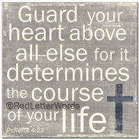 guardyourheartgraydenimncross_md